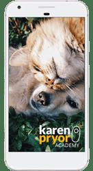 better veterinary visits karen pryor academy