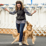 6 month dog trainer professional training program with Emma Parsons