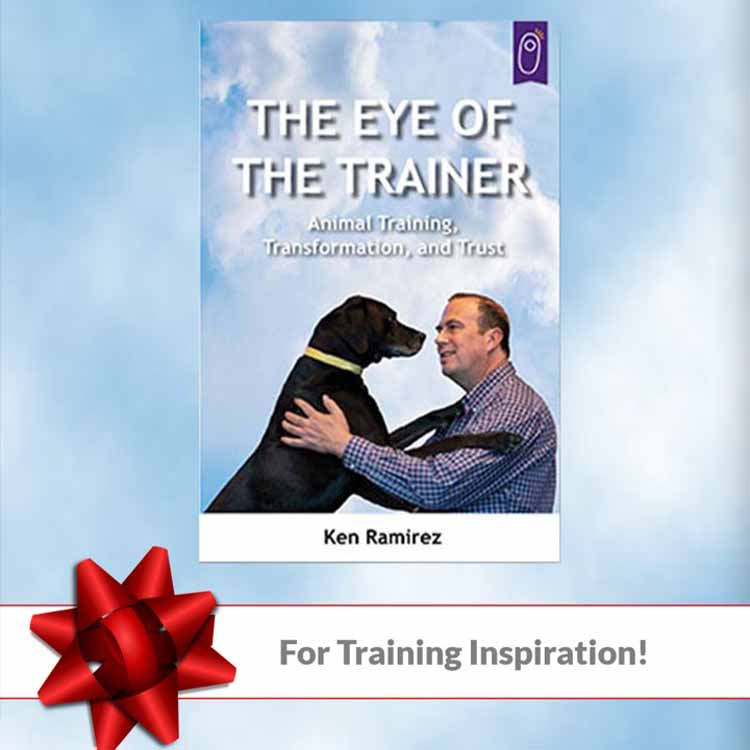 For Training Inspiration