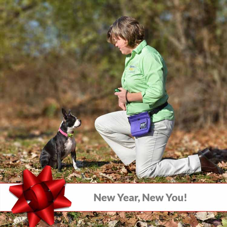 New Year, New You. Photo of Trainer with Dog.
