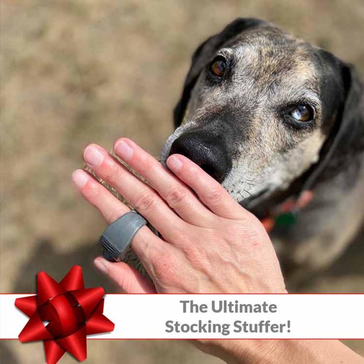 The Ultimate Stocking Stuffer